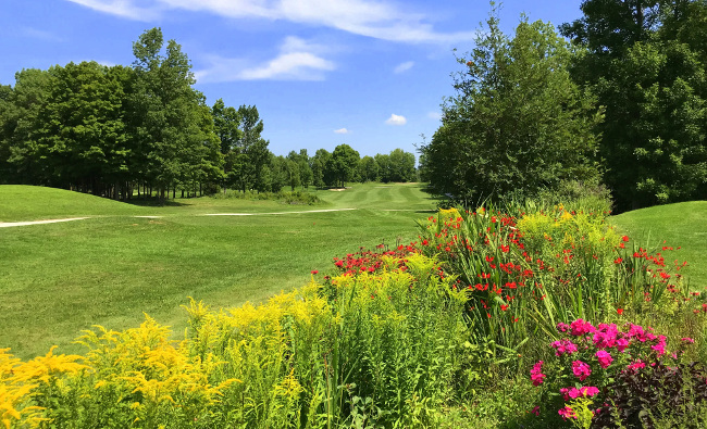Stone Tree Golf and Fitness Club Owen Sound